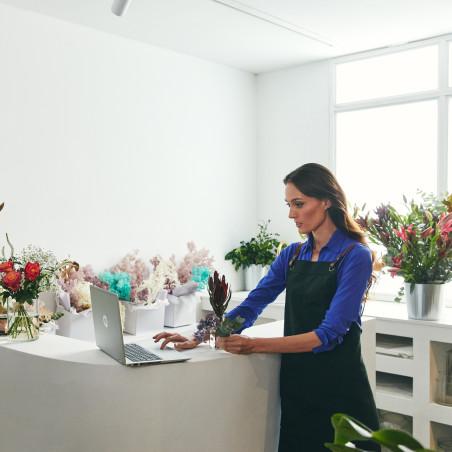 Seagate NAS HDD IronWolf 3TB 3000GB Serial ATA III disco rig